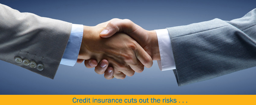 Specific Risk Credit Insurance from Peter Hill Credit